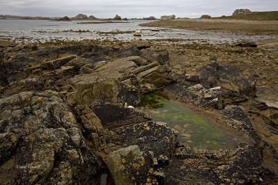 David Howell-wild shore plougrescant france.jpg