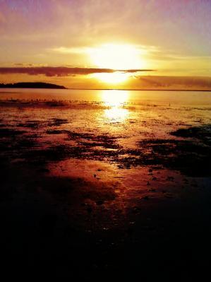 George Ventura-humboldt sunset.jpg