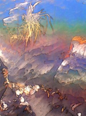 George Ventura-land slice.jpg