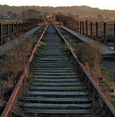 Ginny Dexter-old railroad tracks over elk river.jpg