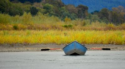 Jon Exley-fern bridge fishing.jpg