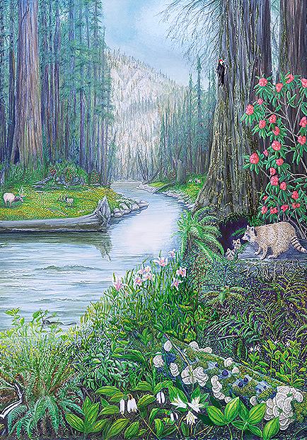 Kim Reid-Eel-River-Dreams-Large-View.jpg