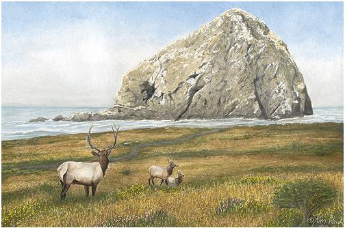 Kim Reid-Sugarloaf-Island-LargeView.jpg