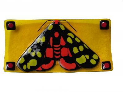 melissa zielinski-tiger moth.jpg