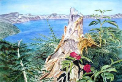 Pat Cahill-stump at crater lake.jpg