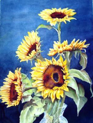 Pat Cahill-sunflowers.jpg