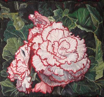 Pat Durbin-begonia picotee lace.jpg