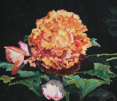 Pat Durbin-fire flower.jpg