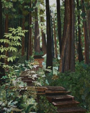 Pat Durbin-forest walk.jpg