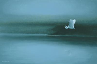 Shawn Gould-egret blue.jpg