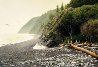 Shawn Gould-on the lost coast.jpg