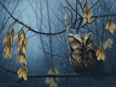 Shawn Gould-screech in the hollow.jpg