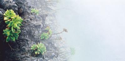 Shawn Gould-the edge.jpg