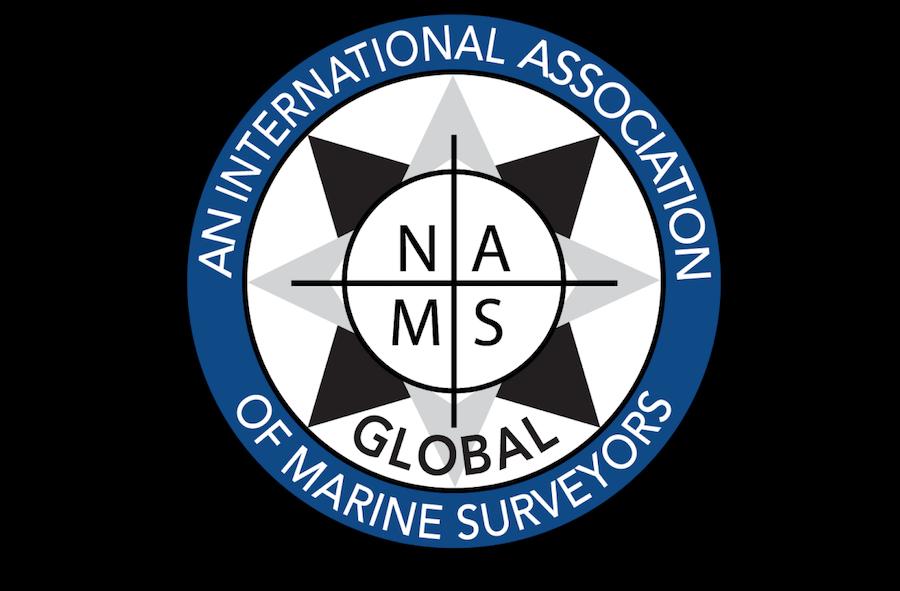 NAMS logo transparent with surround rectangle.png