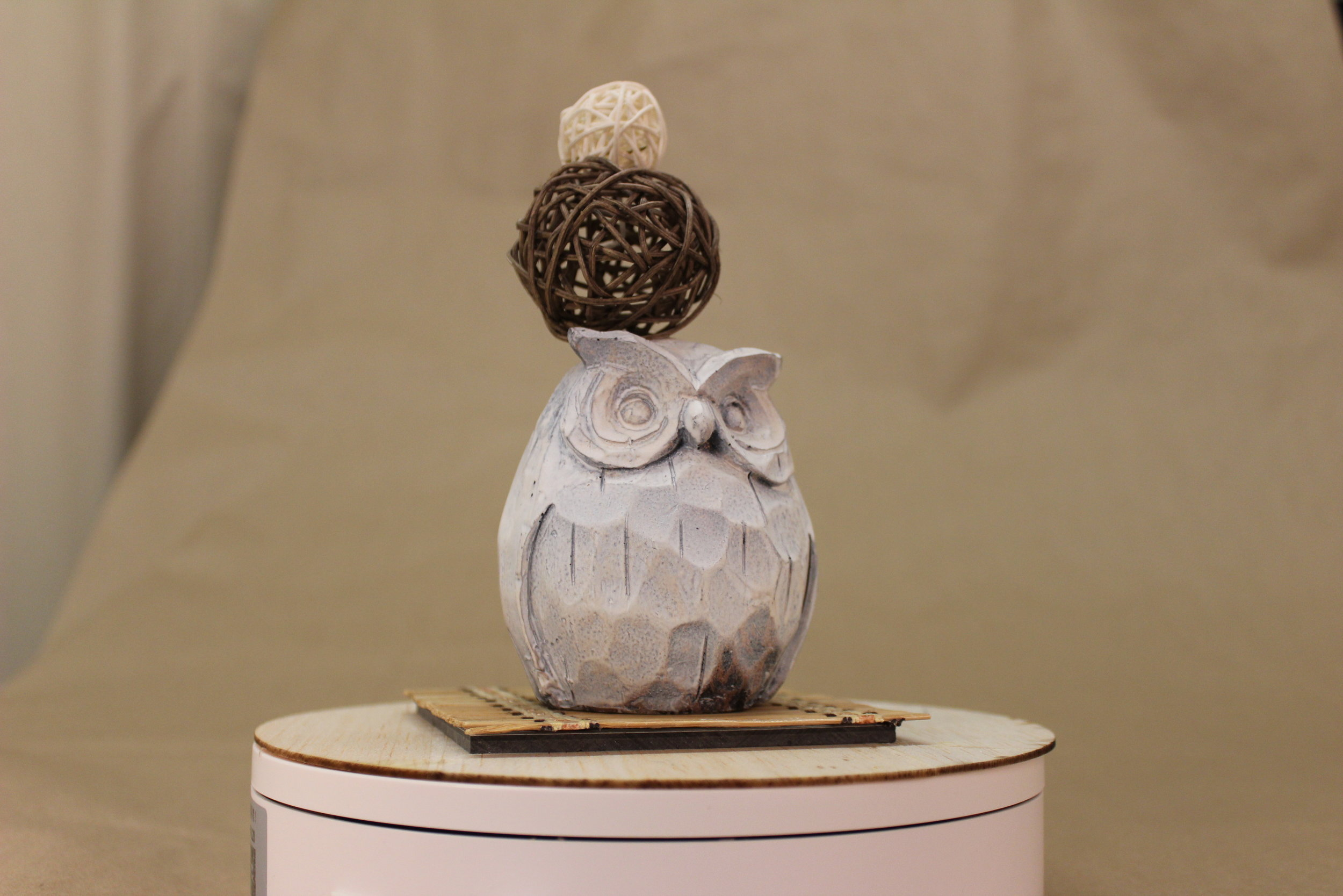 Owl side.JPG