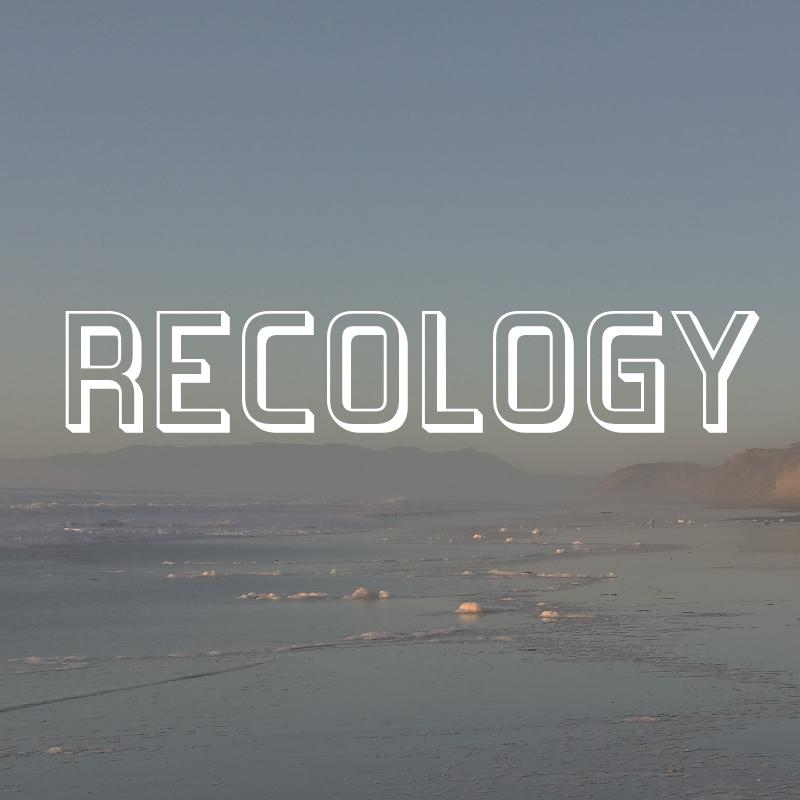 9_RECO_THUMBF.jpg