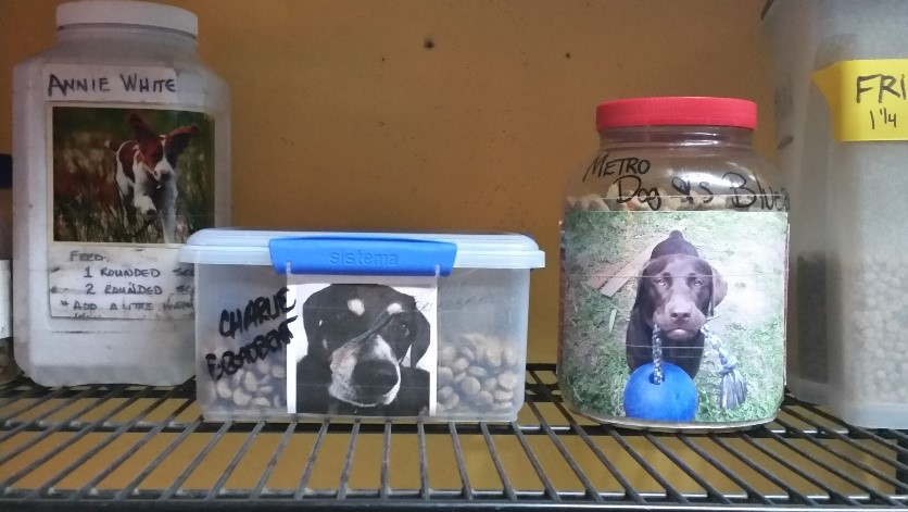 Yes! Food is in ridged sided containers, labeled with dog's full name and serving sizes.  Pictures of your dog are optional, but really cute!