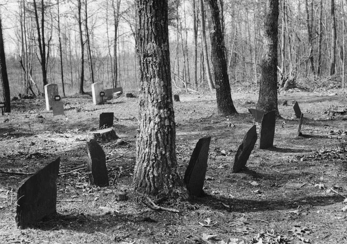 Figure 1. Stanton Family Cemetery, Buckingham County, Virginia, n.d.. Courtesy Virginia Department of Historic Resources.