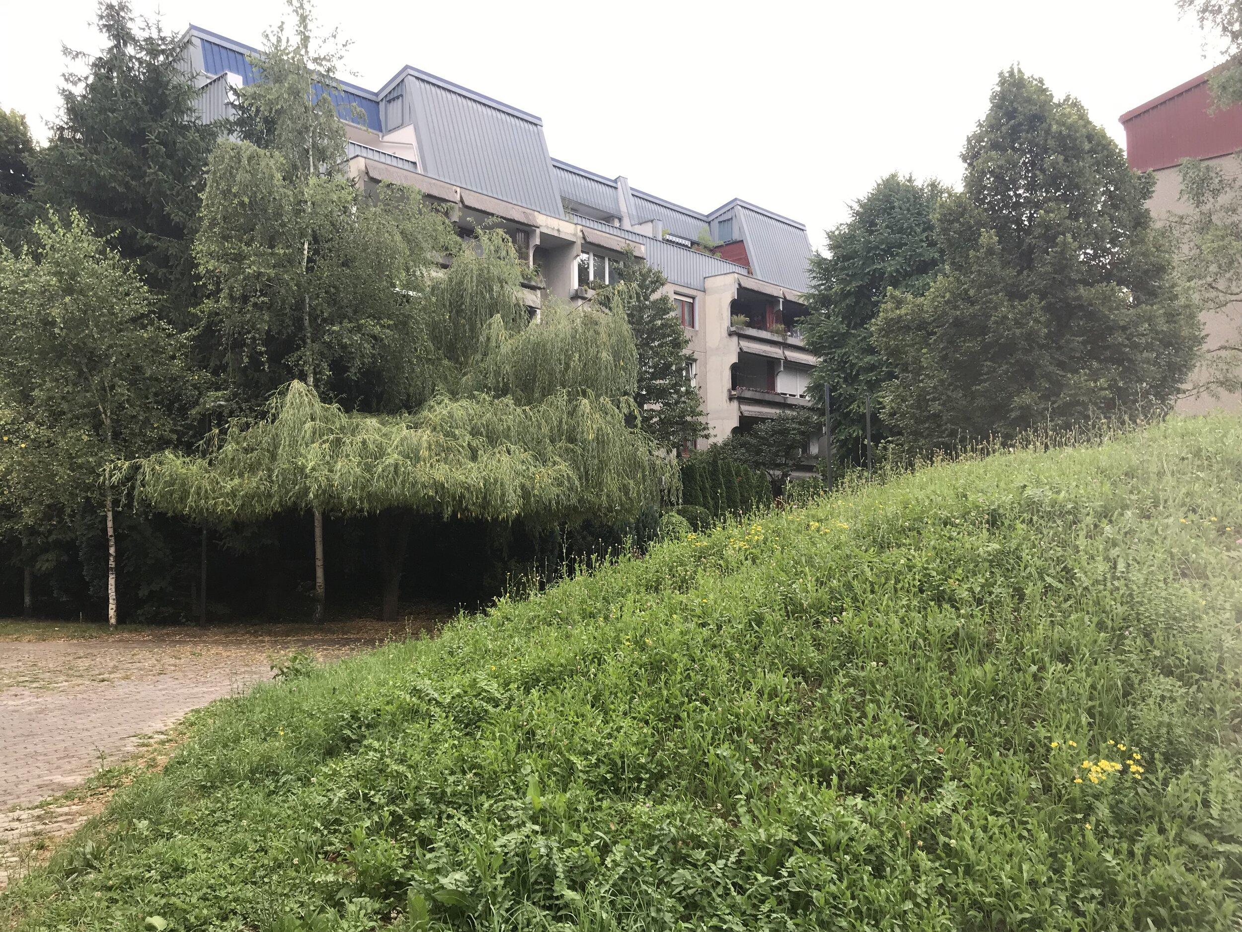 Figure 5. Fužine_04: Verdant landscaping surrounding low-rise Fužine buildings, 2019. Photograph by Michael R. Allen.