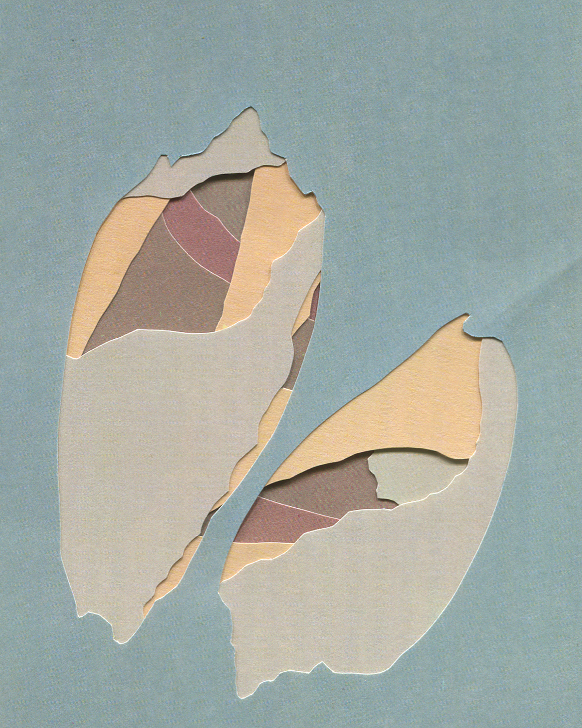 Shell Island #15, collage, 2016, found paper, 100mm x 150mm
