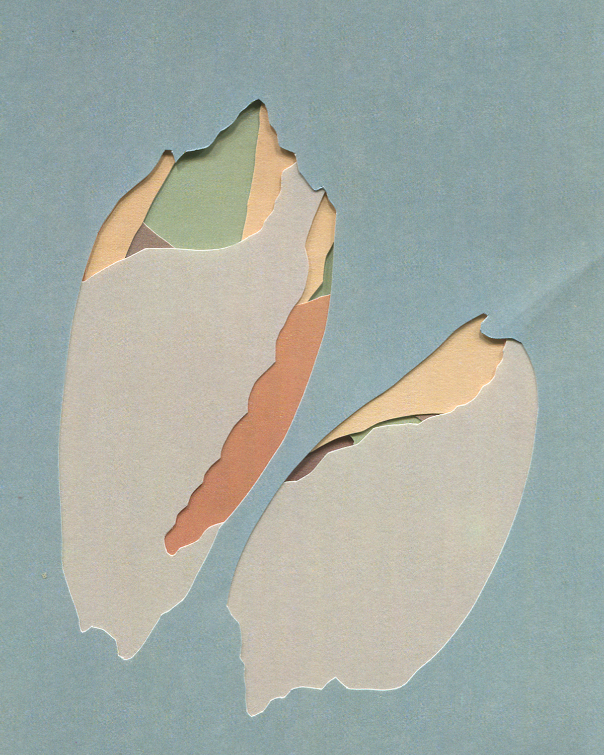 Shell Island #14, collage, 2016, found paper, 100mm x 150mm