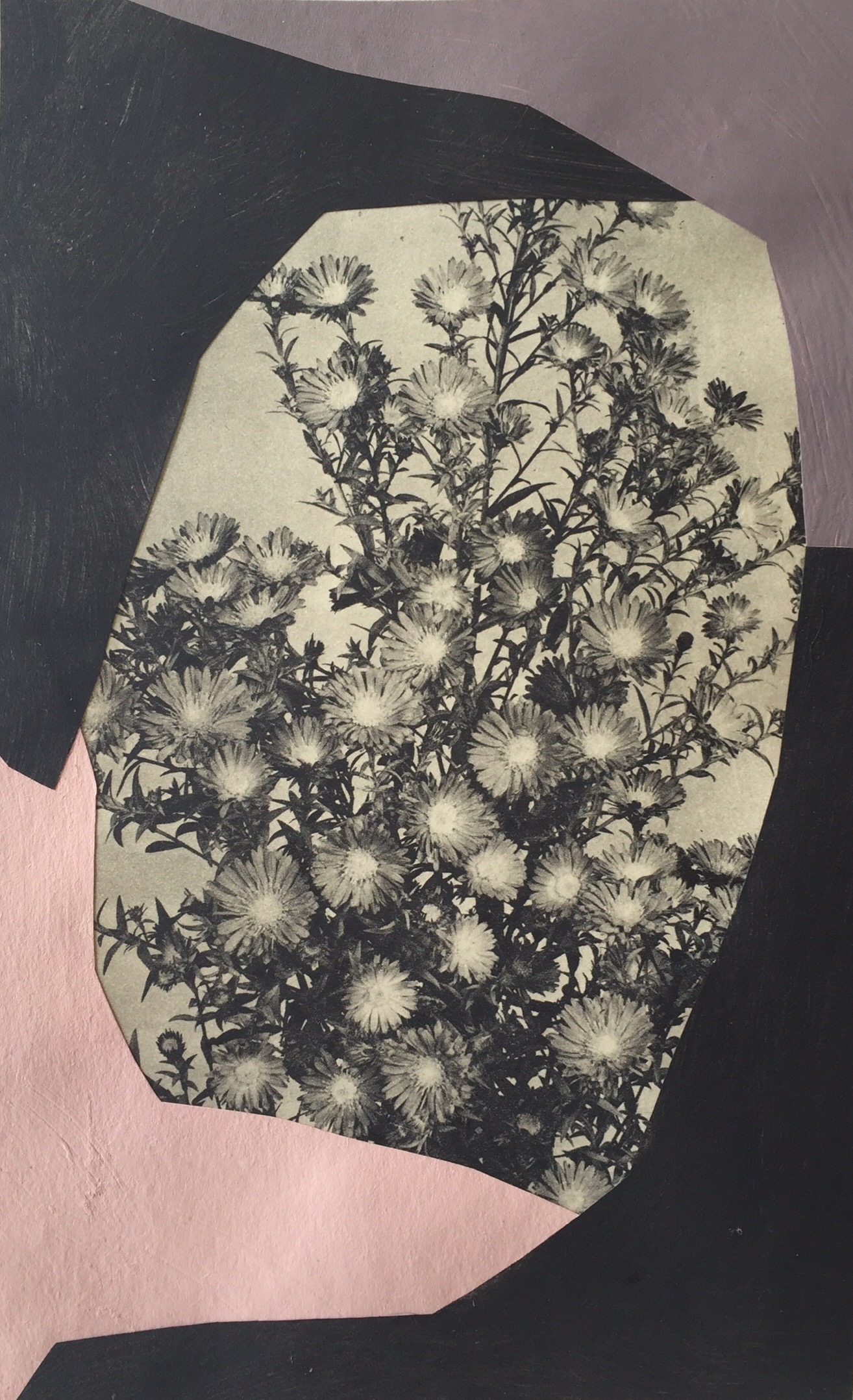 Flowers, 2016