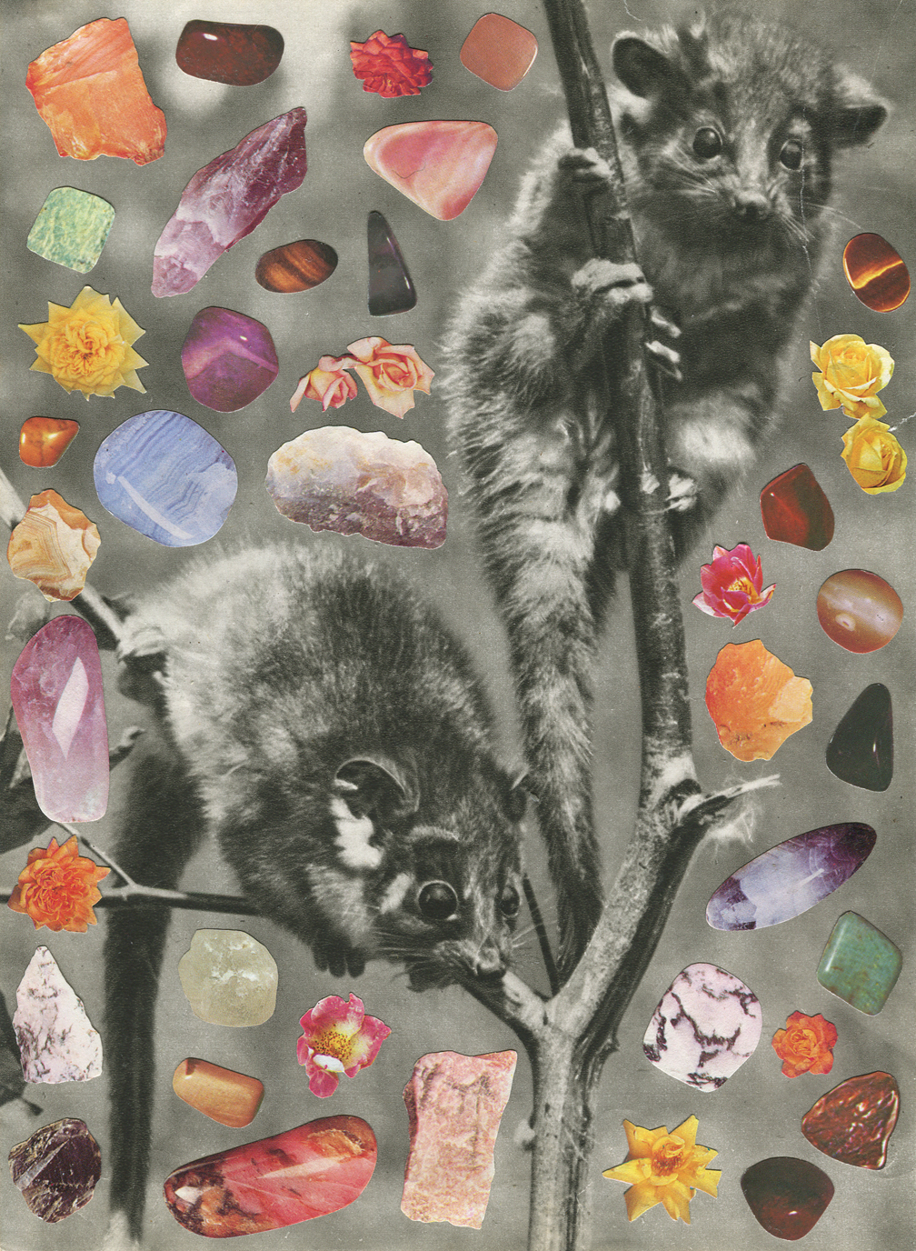Possums #1, 2018, collage, found paper,