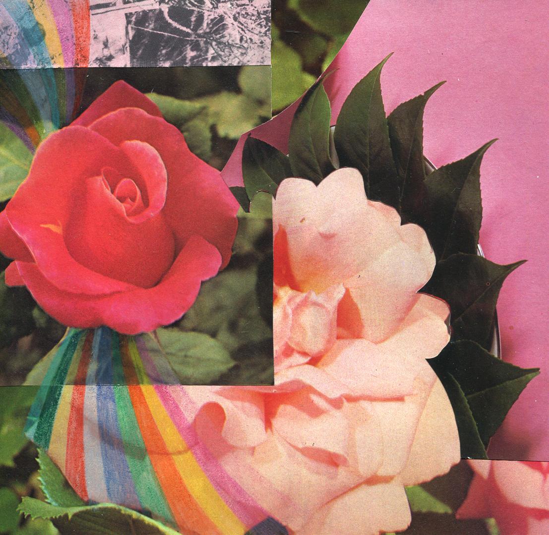 Rainbow Rose Garden #8, collage, found paper, pencil