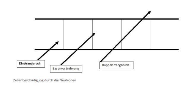 Natürliche Störzonen
