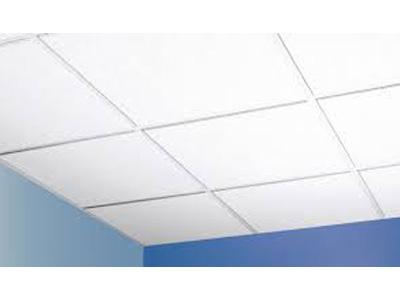 prefab-t-type-house-ceiling.jpg