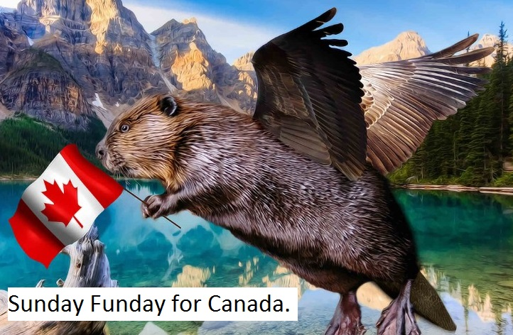 Flying-Beaver-with-a-Canadian-Flag--110001.jpg