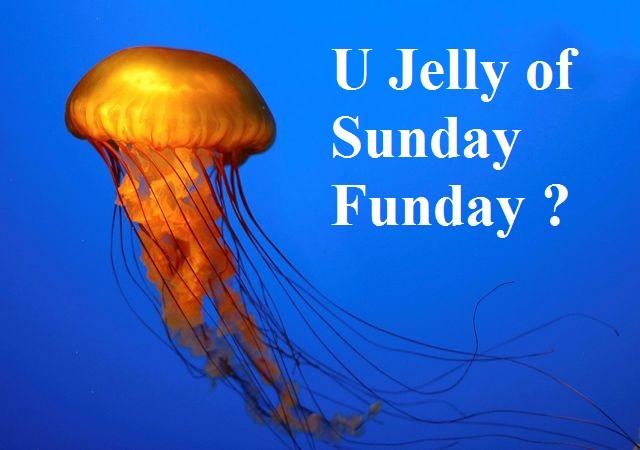 jellyfish-007.jpg