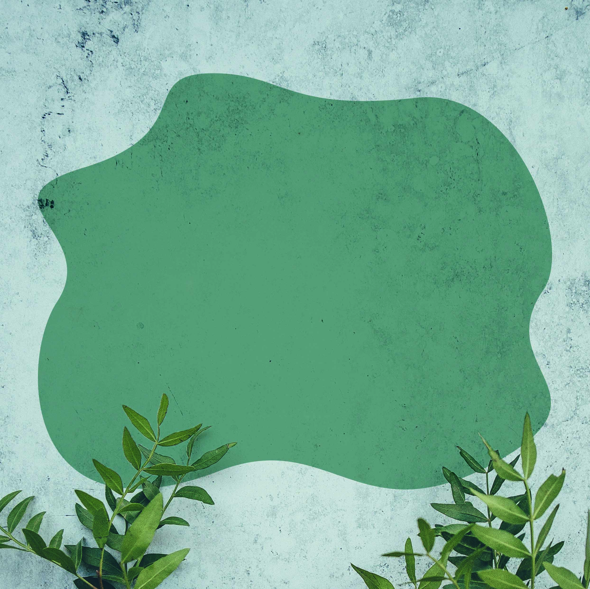 What is Green Rehab? -