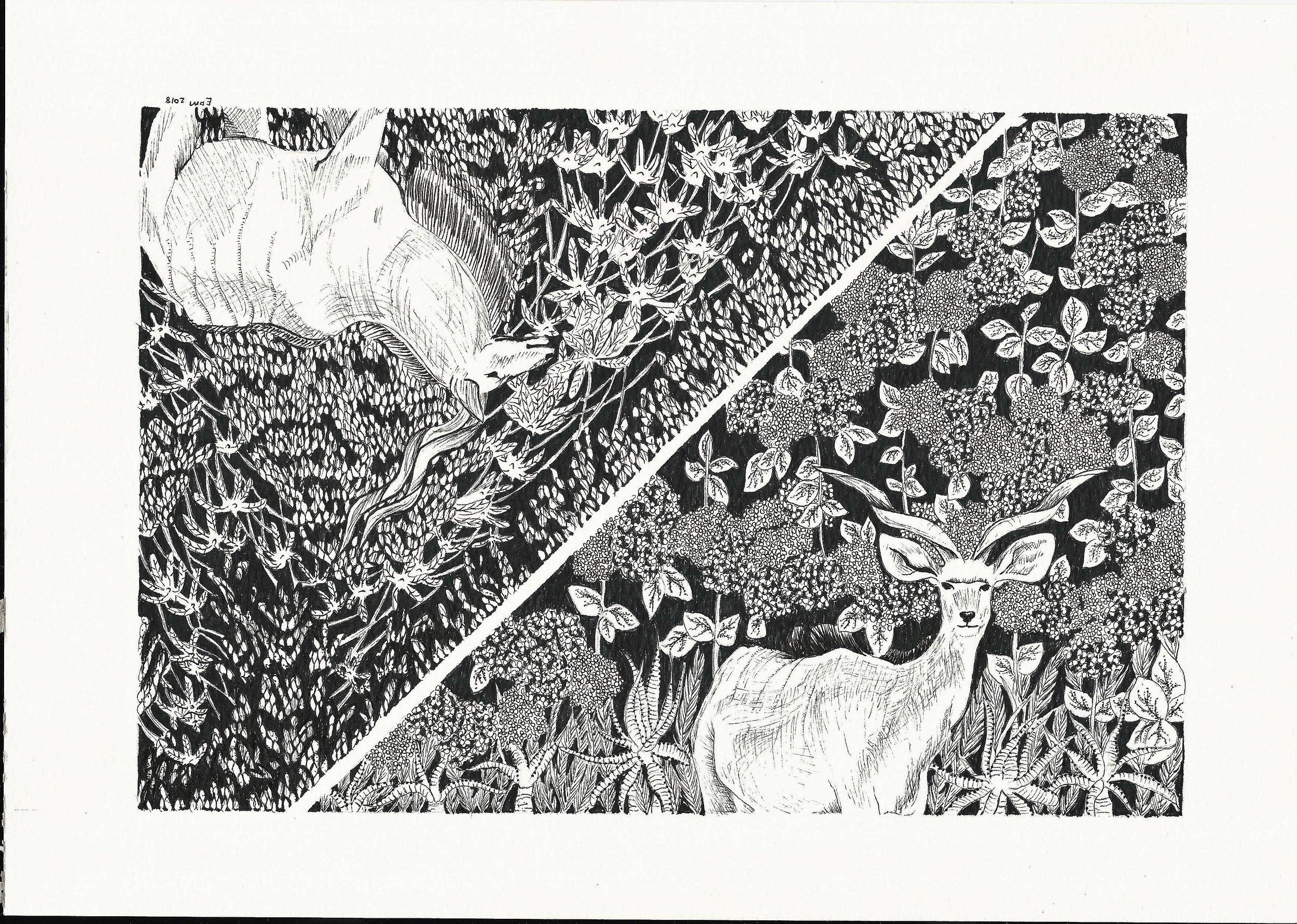 Dry Estelle, Spring Autumn, 2017  Fine Line Paper on Acid Free Paper  21 cm X 29 cm,  Framed – R1800