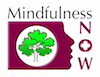 Mindfulness NOW Logo (2).png