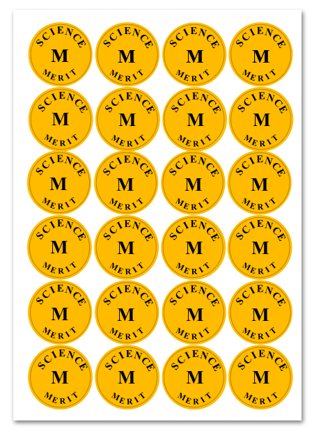 lordswood-first-merit-stickers-dan-king.png