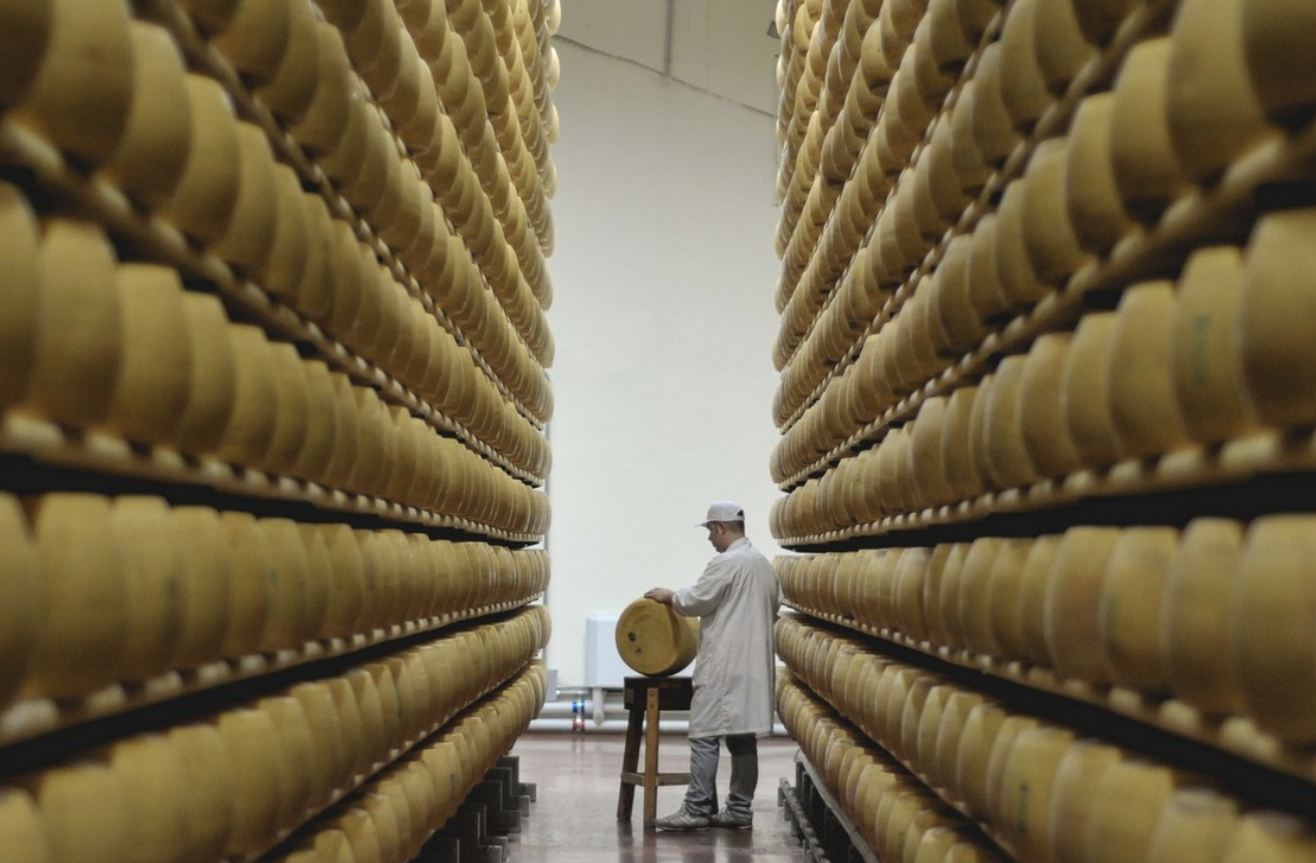 HOMBRE FARM - Closed-loop production, organic farming, hectares of pasture, constant technological research, special attention to the well-being of the animals bred. One single goal: the best milk possible. The Parmigiano cheese, or