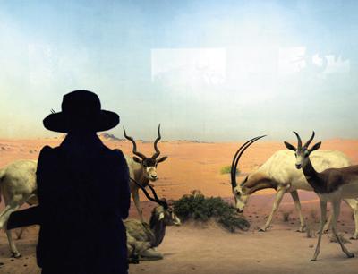 "Natural History XVIII  C-print, 20"" x 30"", 2009"