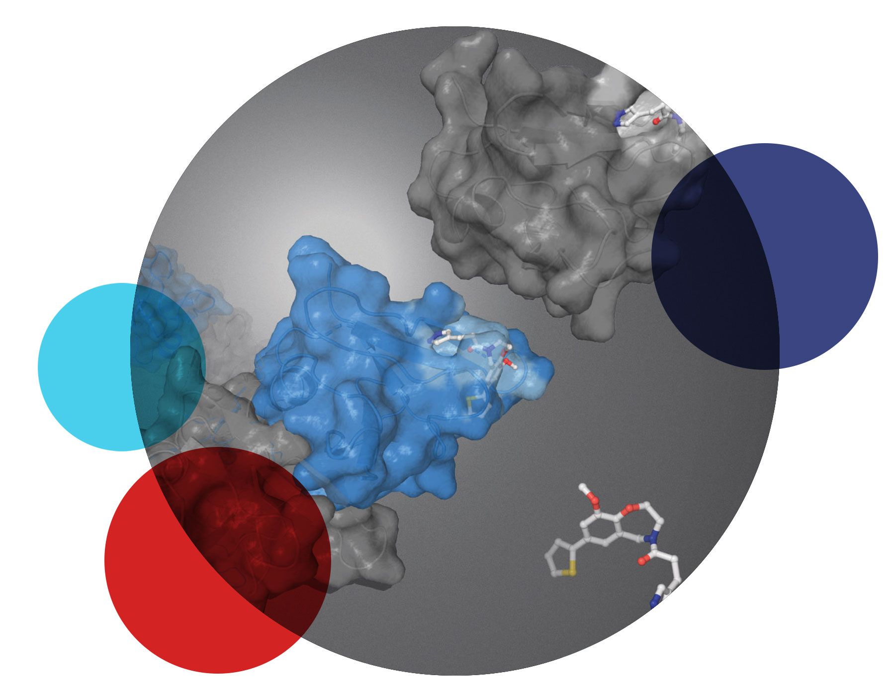 IMAGE: In silico docking OR In silico simulation of protein binding pocket interactions