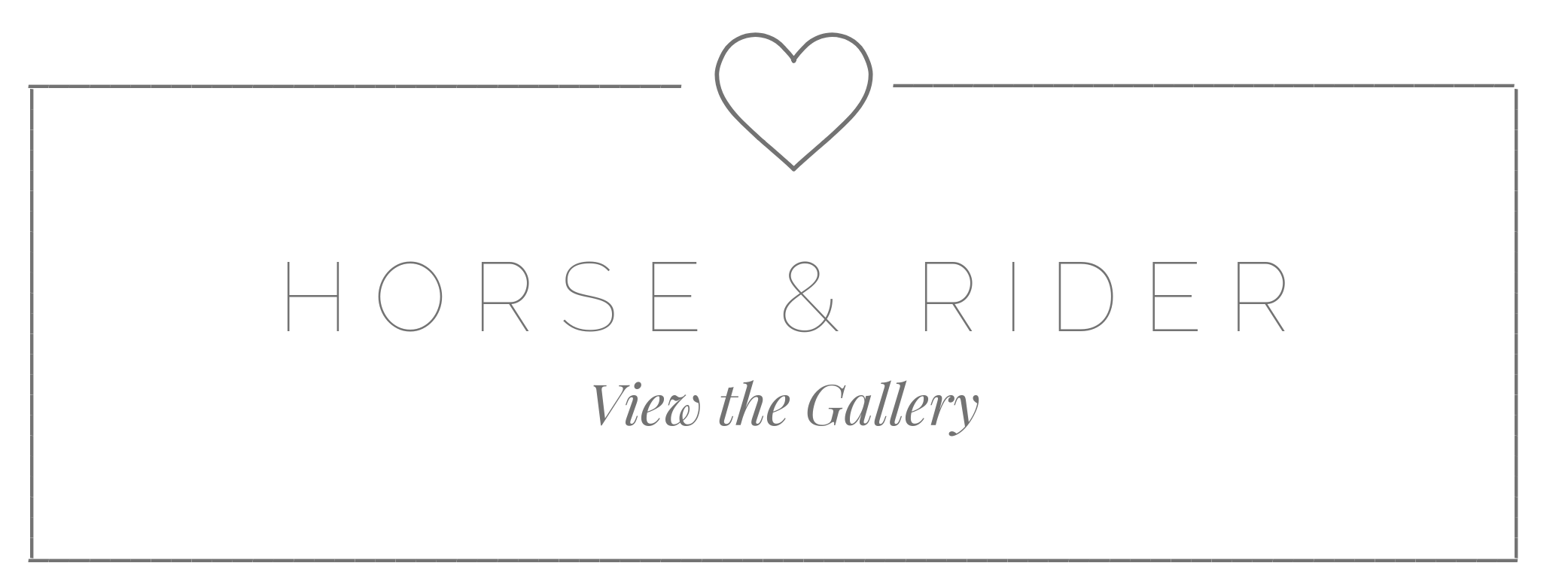 HORSE AND RIDER GALLERY.png