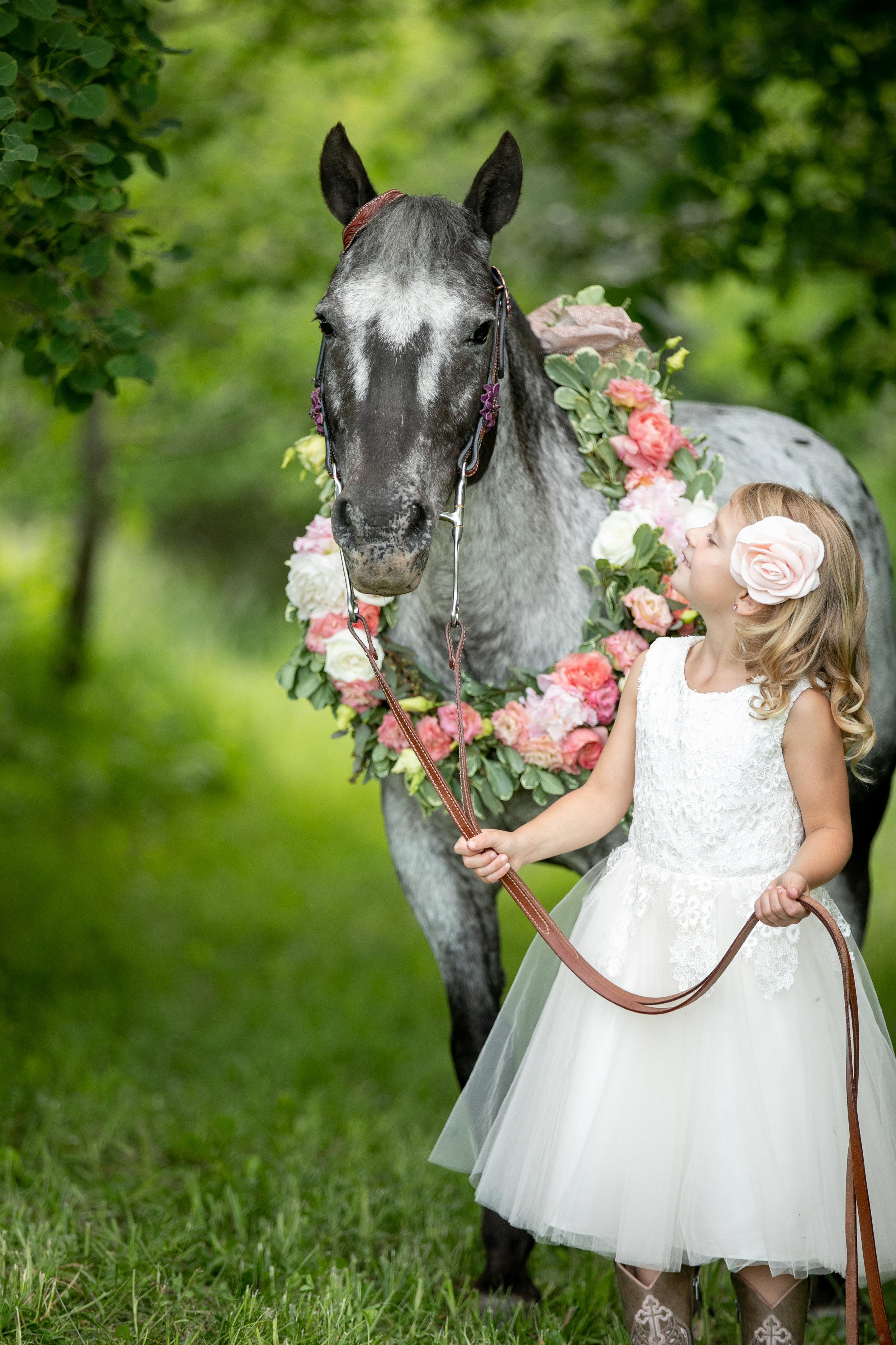 Horse and Rider - Elyse Bullard Photography.jpg
