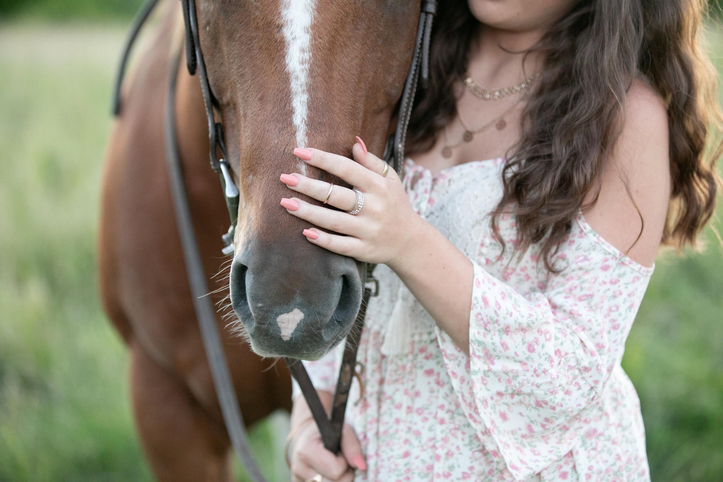 Horse and Rider - Elyse Bullard.jpg