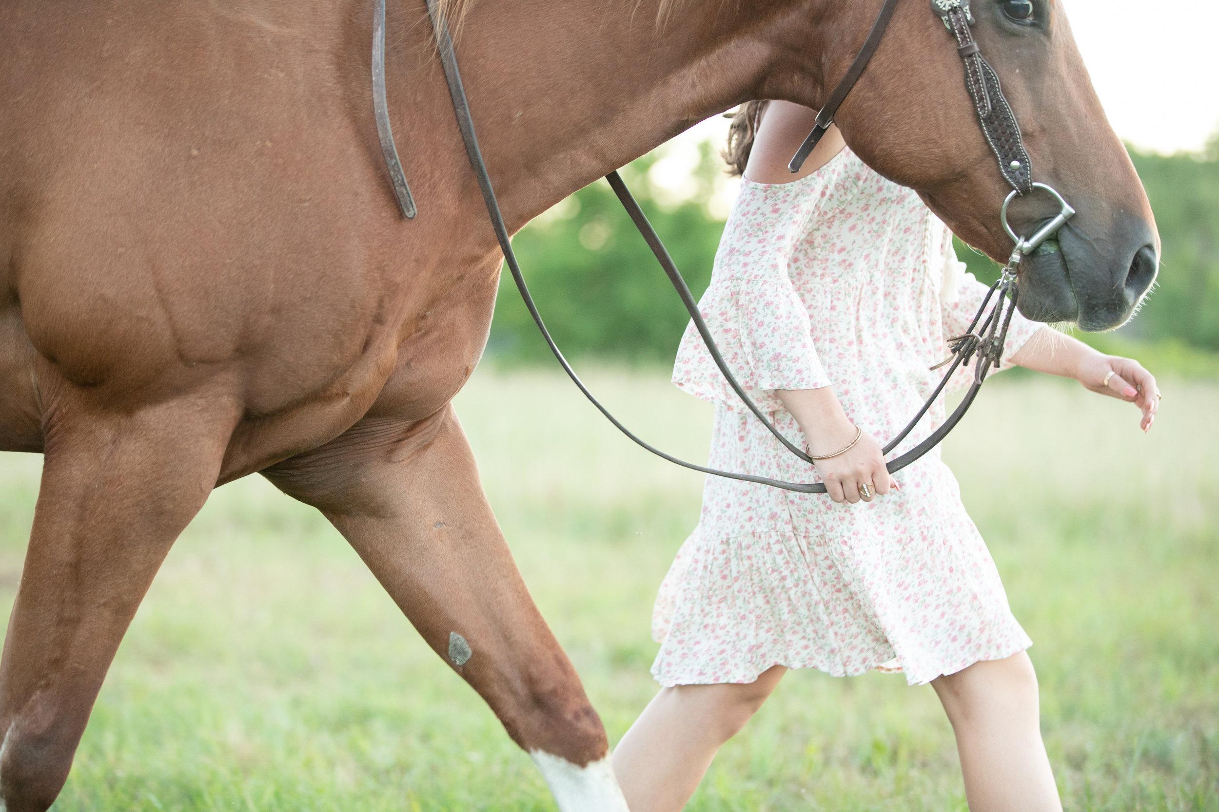Elyse Bullard - Horse and Rider.jpg