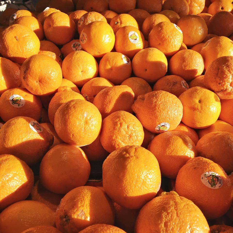 A gaggle of fresh, organic Tangerines.jpg