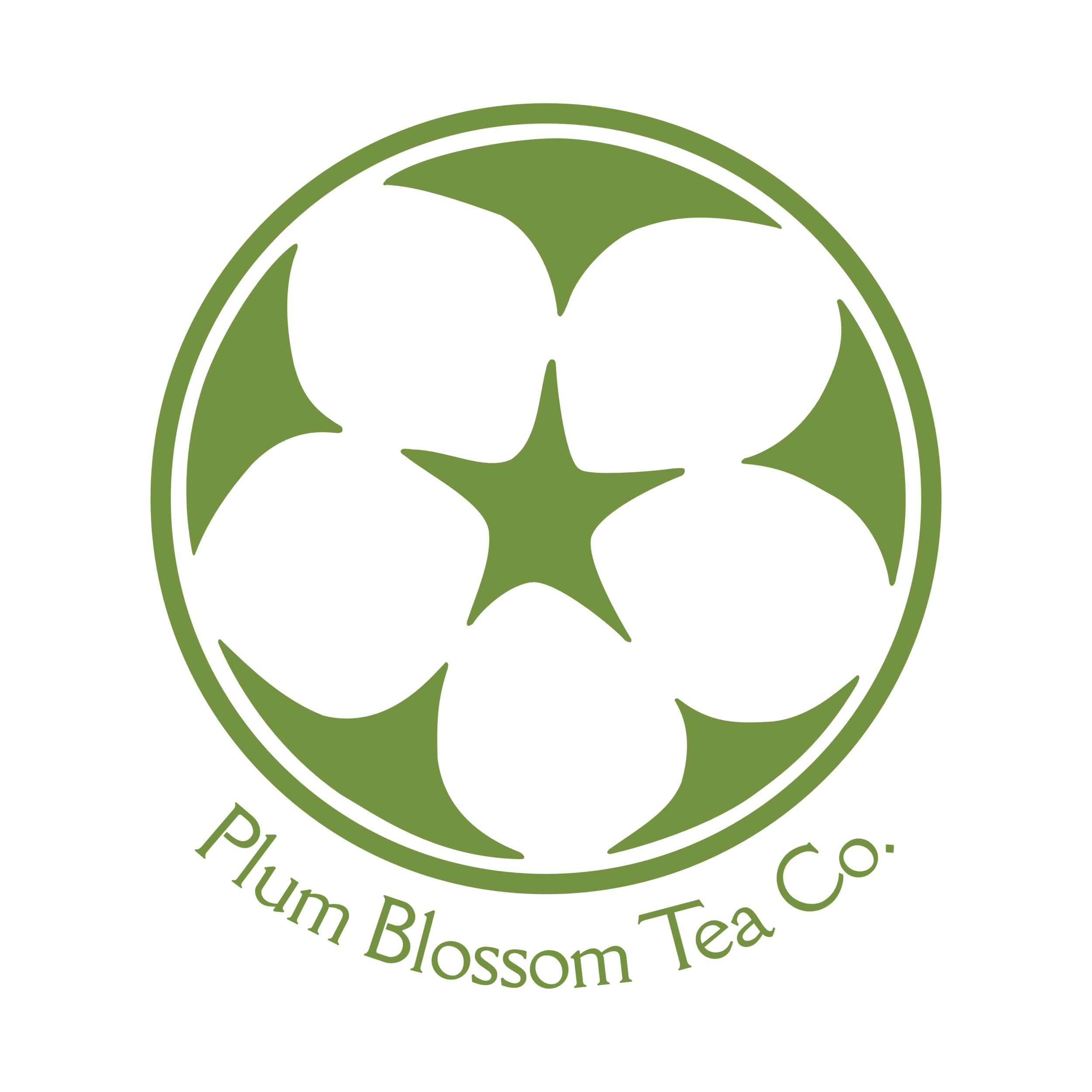- Plum Blossom Tea Company tasting room and retail tea shop offers premium matcha, Asian teas, and teaware. Come learn how to properly whisk a bowl matcha or how to enjoy an aged pu'er. Visit Michelle in person or online to expand your tea awareness and to purchase your favorites.