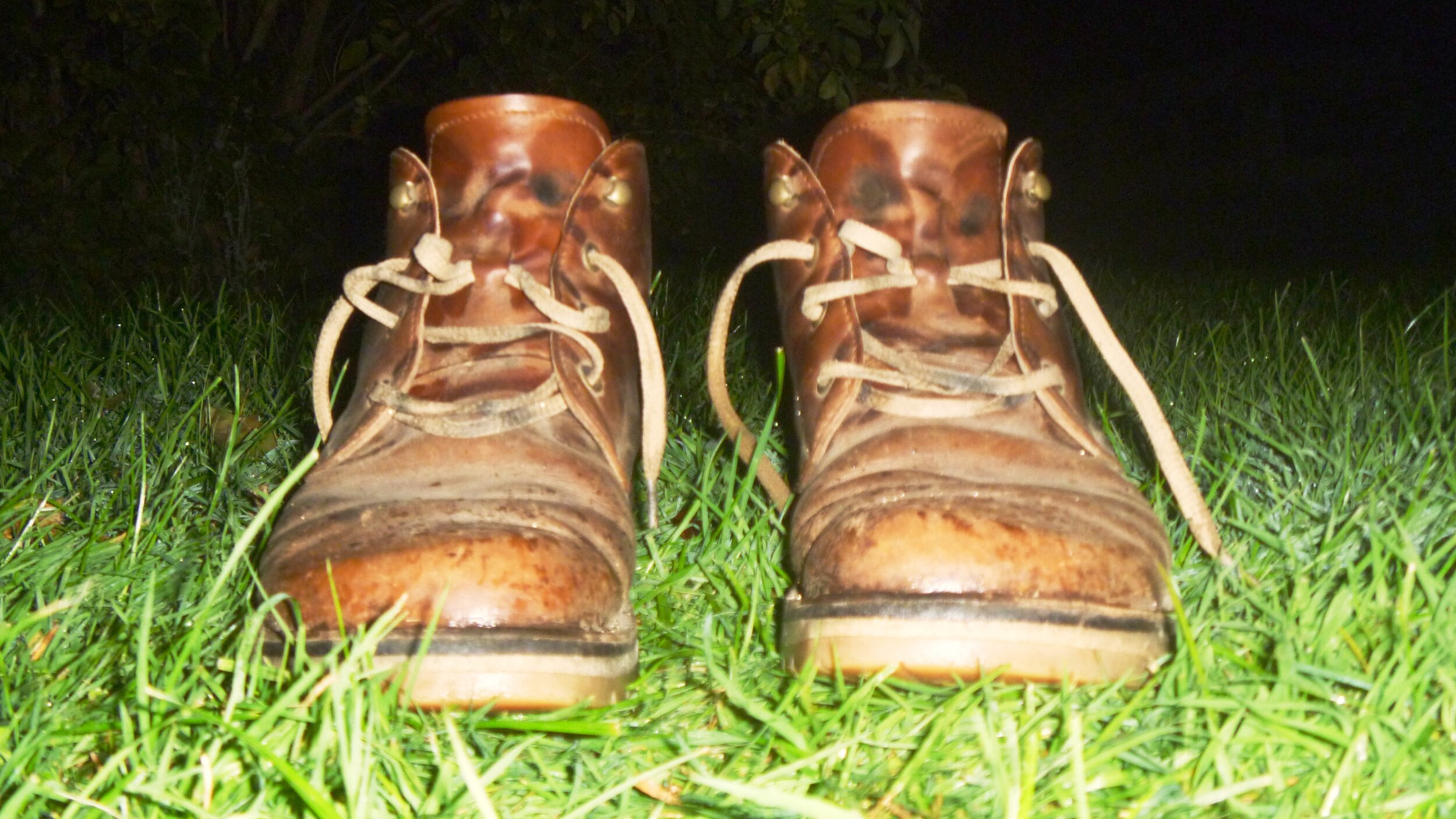 Die Reise meiner Schuhe -