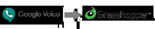 Logo Lockup - Google Voice Grasshopper.png
