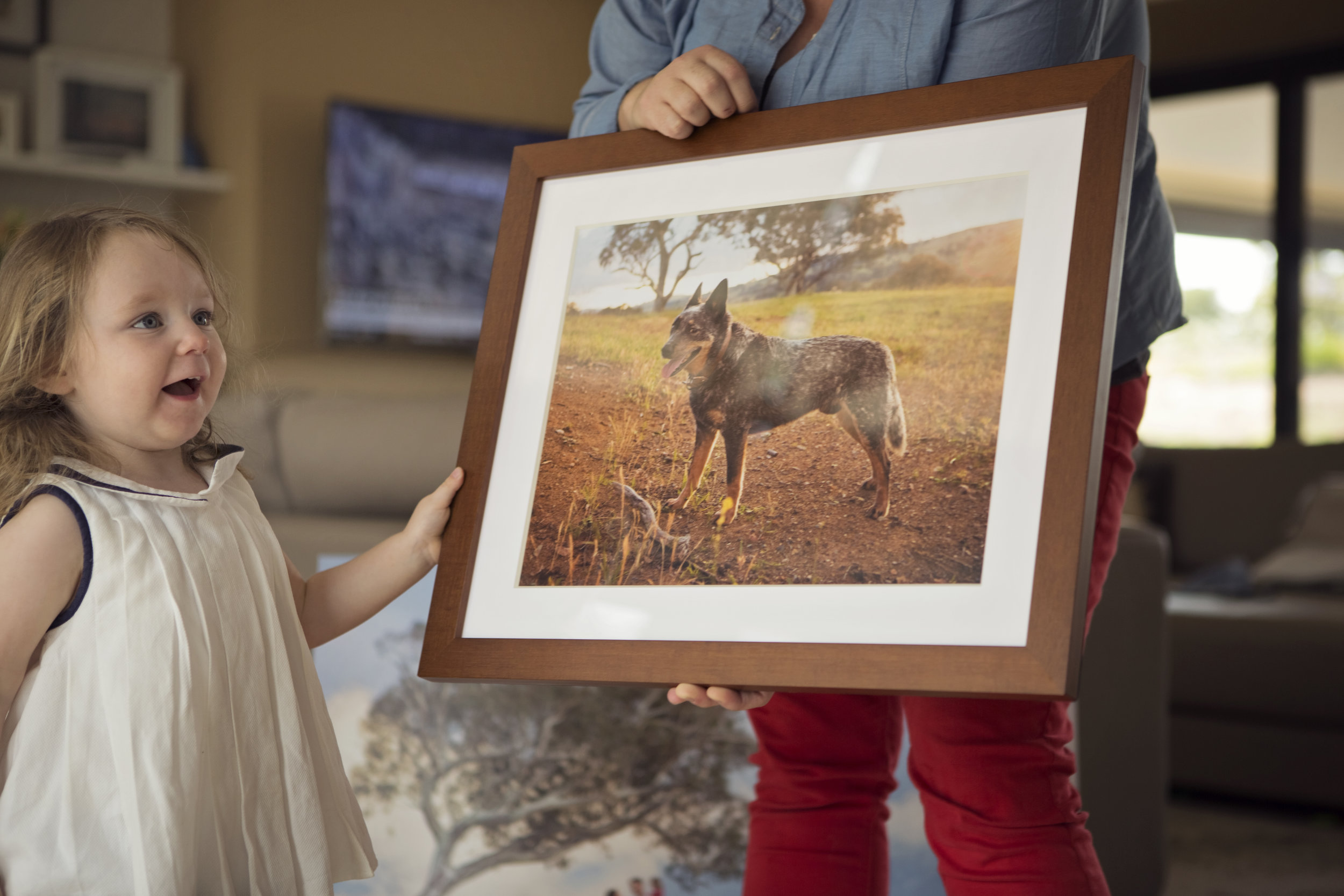 Medium Frame $350   For your favourite picture, my medium frame is the perfect size to add to a photo wall or fit a smaller wall space.