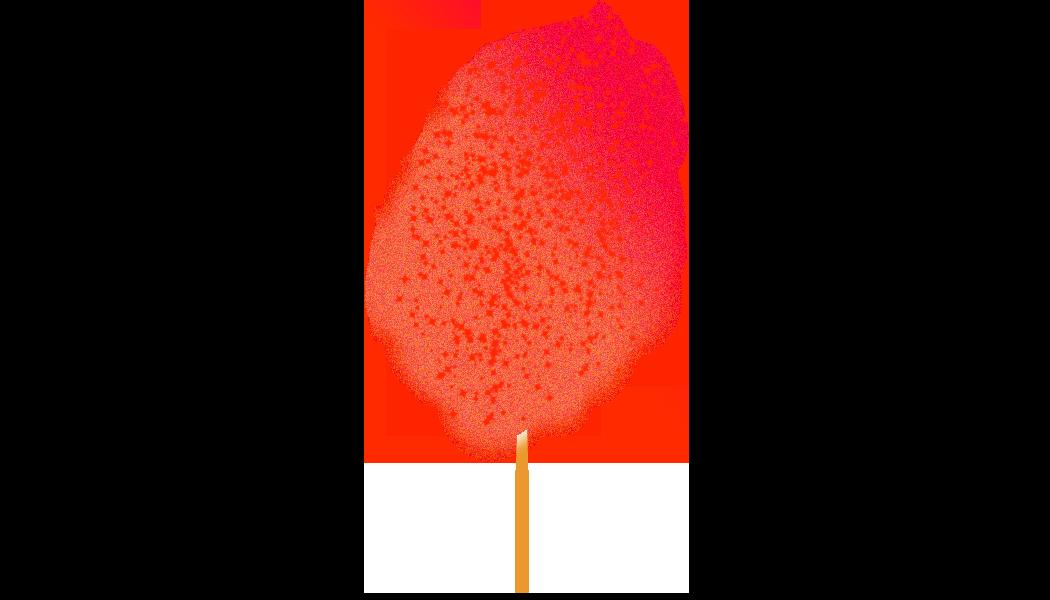 Mango Chile.png