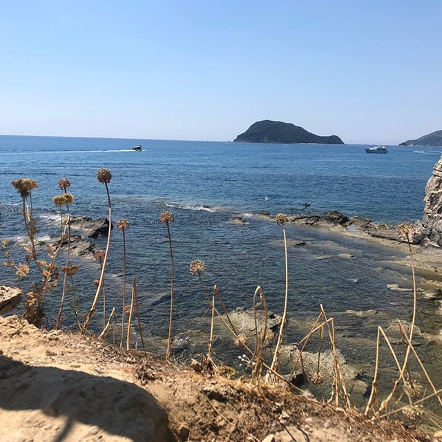 Throwback to sunny Greece 🌾💚 .⠀⠀⠀⠀⠀⠀⠀⠀⠀ .⠀⠀⠀⠀⠀⠀⠀⠀⠀ .⠀⠀⠀⠀⠀⠀⠀⠀⠀ .⠀⠀⠀⠀⠀⠀⠀⠀⠀ .⠀⠀⠀⠀⠀⠀⠀⠀⠀ .⠀⠀⠀⠀⠀⠀⠀⠀⠀ _________________________________________________⠀⠀⠀⠀⠀⠀⠀⠀⠀ #Weddingtrend #Northeastwedding #Northeastweddingplanner #Newcastleweddingplanner #weddinggoals #weddinginspo #ecoconscious #ecofriendlyfashion #inspo #bohowedding #2019bride #weddingblog #newlyengaged #northeastbrides #2019brides #northeastphotographer #Ukwedding #bridesupnorth #bridebook #weddingplanning #trends2019 #weddingdesign #creativewedding #uniquewedding #stylishwedding #2020brides #junebugweddings #rocknrollbride
